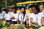 来自国内科研院校、金融机构、有机生产、销售企业专家以及知名有机农业实践者在车河社区品尝有机蔬菜。 中国青年网记者李延兵 摄 - 新浪