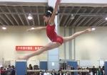 AAA体操锦标赛图片1.jpg - 省体育局