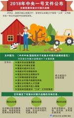 中共中央 国务院关于实施乡村振兴战略的意见 - 扶贫办