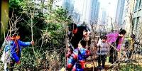 小区绿地植树 居民纷纷点赞 - 太原新闻网